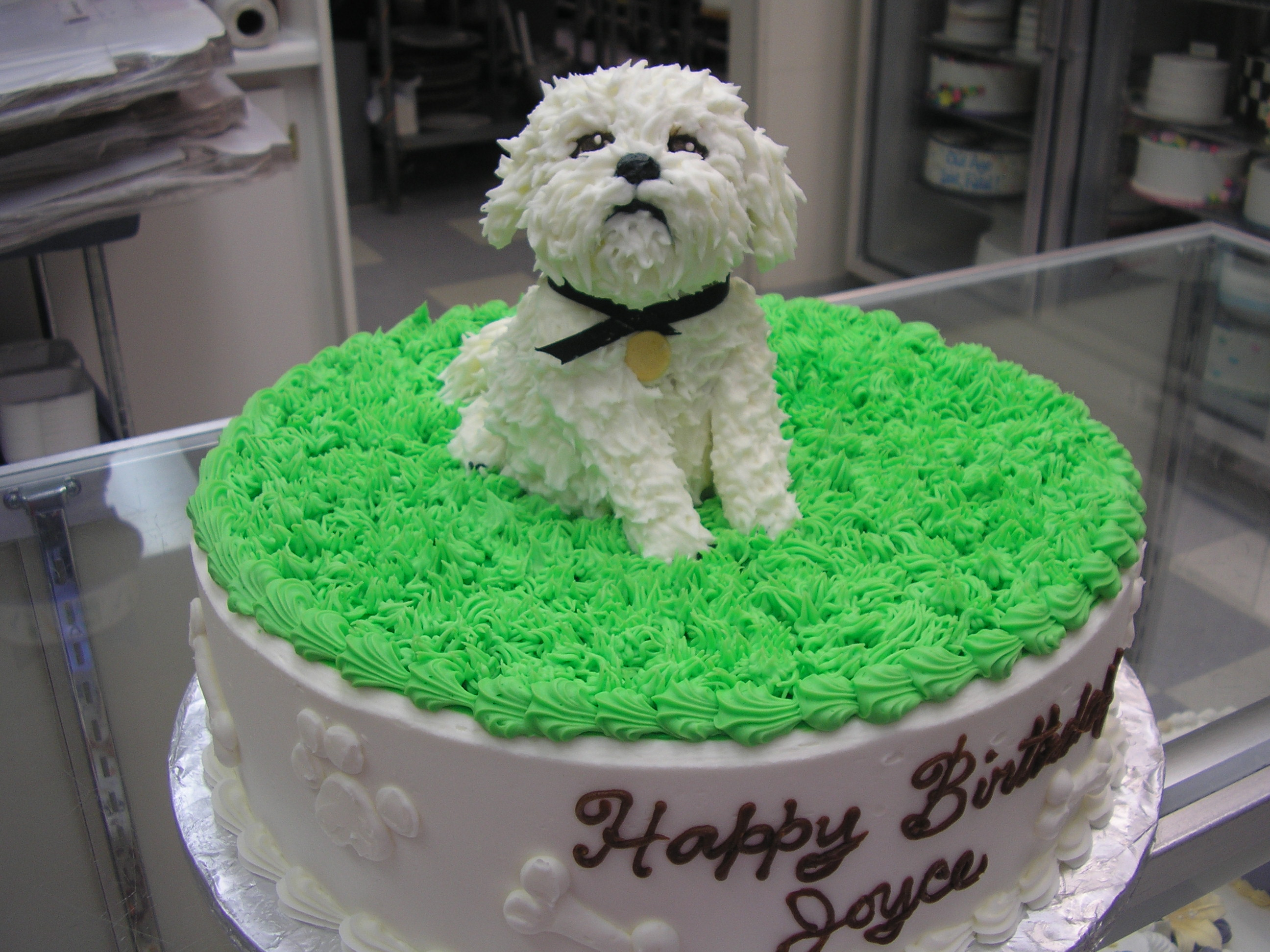 Maltese puppy cake, 3D puppy cake